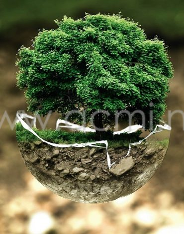 environmental-protection-683437_1280